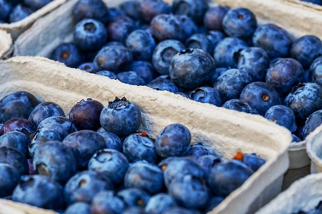 The color of this berry indicates that it has a flavenol compound known as anthocyanin. This is among the antioxidant's. Some call berries natural candy. Blueberries and others have a great natural sweetness.