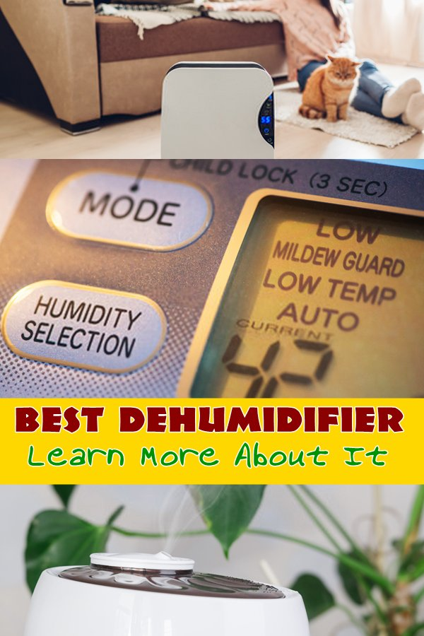 Dehumidifiers Are Perfect For Keeping Your Home Moisture Free. They Can Have Serious Health Benefits, Preventing Mold From Growing On Your Walls, And They Can Also Save You A Lot Of Money On Home Repairs By Keeping Wallpaper And Paint From Peeling.