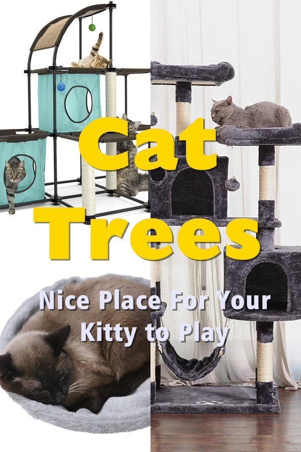 Cat Trees Offer Your Cat Just One Great Place To Get Rid Of Its Energy Without Taking It Out On All The Other Things In Your Home.