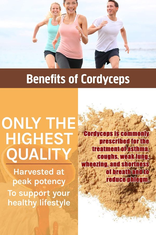 Cordyceps Is A Popular Traditional Anti-ageing Tonic For Body Rejuvenation And To Promote Longevity.