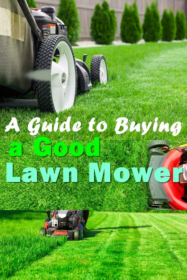 A Lawn Mower Is A Big Investment, And You Should Be Extra Cautious And Doubly Certain Before Making The Final Purchase.